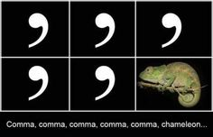 Ahahahahahaha-Comma Chameleon