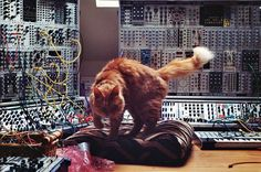 A photograph apparently taken by a friend of Richard David Jame's (Aphex Twin) girlfriend in his studio of his modular set up & gi...