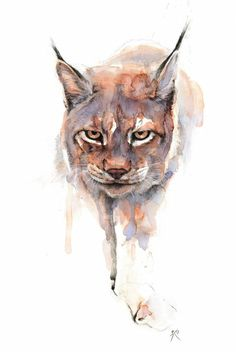 The Lynx by alarie-tano (print image) Art Watercolor, Watercolor Animals, Big Cats Art, Cat Art, Horse Drawings, Animal Drawings, Fuchs Tattoo, Aquarell Tattoos, Celebrity Drawings