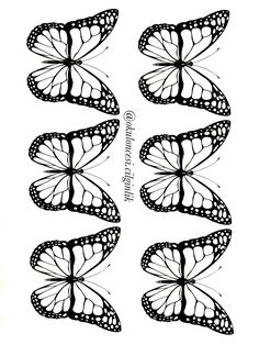 Insect Coloring Pages, Colouring Pages, Coloring Books, Applique Patterns, Flower Patterns, Outline Pictures, Flower Template, Butterfly Art, Doodle Drawings