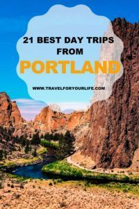Best Day Trips from Portland Travel Route, Usa Travel, Solo Travel, Travel Articles, Travel Advice, Oregon Dunes, Ecola State Park, Washington Dc Travel, San Francisco Travel