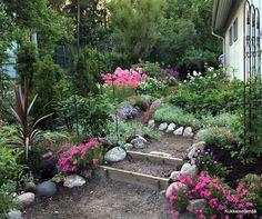 Stepping Stones, Lifestyle, Garden, Outdoor Decor, Plants, Summer, Home Decor, Stair Risers, Garten