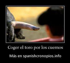 """""""Coger/agarrar el toro por los cuernos"""" grab the bull by the horns."""