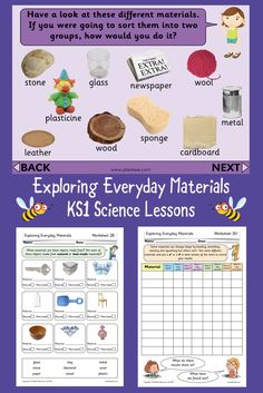 1st Grade Worksheets, Science Worksheets, Science Lessons, Science Activities, Life Science, Science And Nature, Science Inquiry, Free Worksheets, Study Materials