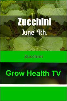 #garden Zucchini #gardening #vegetables Organic Fruits And Vegetables, Gardening Vegetables, Fruit And Veg, Growing Vegetables, Grow Organic, Arbors, Types Of Soil, Canopies, Outdoor Landscaping