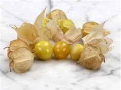 Ground Cherry | Baker Creek Heirloom Seed Co  By far my favorite and the star of the garden this year!  Sooo delicious! Cherry Seeds, Edible Garden, Fruit Garden, Garden Seeds, Rare Plants, Grape Orchard, House Plants, Vegetable Garden, Dirt Candy