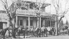 Horses hitched in front of the hotel in Last Chance. The upper story could only be reached by a ladder from outside.
