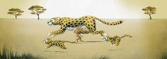 Wild (Running with Cheetahs) - la fiancée au beurre salé / Emmanuelle Colin Cheetahs, Cute Illustration, Illustrations, Belle Photo, Big Cats, Panther, Giraffe, Street Art, Photos