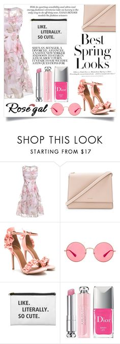 """""""Rosegal - Pink Floral"""" by maidaa12 ❤ liked on Polyvore featuring Kate Spade, H&M, Ray-Ban and Christian Dior"""