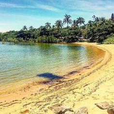 #aus #Australia #downunder #holiday #ocean #beautiful #cairns #cockatoos #exploretnq #thisisqueensland #tnq #greatbarrierreef #hashtag #hot #instagram #instafamous #koalas #kangaroos #nofuckingfilter #oz #palmtrees #qld #reef #vegemite by outlaw_powerstroke http://ift.tt/1UokkV2