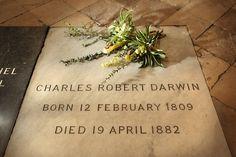 Charles Darwin; o minte de geniu, un explorator curios - Ethink.ro