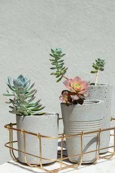S for Succulents and Sun // :sunny: Concrete Plant Pots, Potted Plants, Planter Pots, Succulents, Urban, Pot Plants, Succulent Plants, Container Garden, House Plants