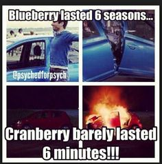 So true. every time I see a blueberry I just think ahhh yiss psych Psych Quotes, Funny Quotes, Funny Memes, Hilarious, Psych Memes, Psych Tv, Watch Psych, Best Tv, The Best