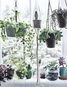 Grow a window garden - combine hanging planters and potted plants to create a window full of nature. Mix all shapes, sizes and colours of leaves and pots. Find more indoor gardening ideas at IKEA.com #IKEAIDEAS