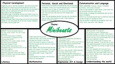 Minibeasts EYFS medium term plan