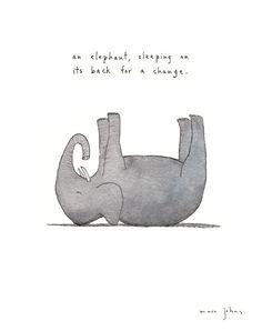 an elephant, sleeping on its back for a change Art Print