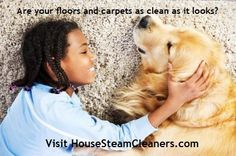 Read #What #is #a #Steam #Cleaner? Article at HouseSteamCleaners.com.