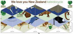 NZ Native Birds and Animals Kaleidocycle Template Printable.