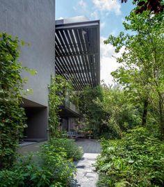 unfold-intimate-landscape-harmonious-architectural-spaces-surrounded-lush-vegetation-11
