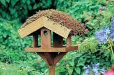 How to make a green roof for your bird table - Projects: Creative projects - gardenersworld.com