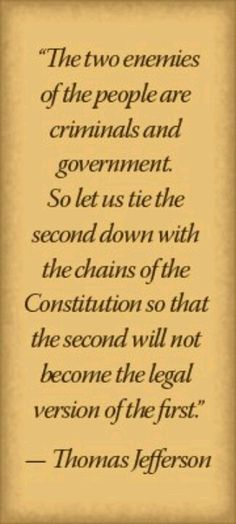 Thomas Jefferson must be rolling at the interpretations in the century - especially of one who has excessively abused Executive Orders for his own agenda. Great Quotes, Quotes To Live By, Me Quotes, Inspirational Quotes, People Quotes, Lyric Quotes, Jefferson Quotes, Thomas Jefferson, Political Quotes