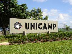 O conteúdo digital do e-Unicamp também traz animações, imagens e simulações de diversas disciplinas.