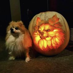 Andy Manoloff's magnificent pumpkin carving...