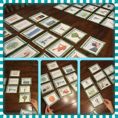 Potential and Kinetic Energy is such an important concept for students to understand. This set will allow your students to differentiate between Potential and Kinetic Energy with many different examples. This interactive card sort activity contains 8 pages of cards (4 per page) for a total of 32 different cards.