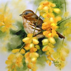 """""""Golden Showers of Flowers"""" fine art original par Paulie Rollins"""