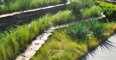 如此极致的景观,不得不服 Green Belt, Plants, Plant, Planets