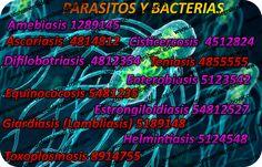 Y PARASITOS bacterias