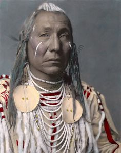 American Old West Archives - Page 9 of 12 - MyVintagePhotos Native American History, Native American Indians, Native Americans, Indian Tribes, Native Indian, Red Wind, Crow Indians, American Crow, Trail Of Tears
