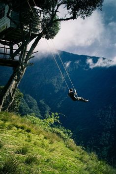 I like swinging,but not  that  way!! I wonder how far up it is?!