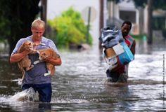 restore faith humanity