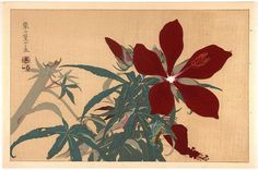 """Flowers"", Rakusan Tsuchiya (Rakuzan) (1896-1976) - 1930s. [source: Japan Art Open Database]"