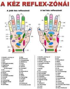 Itt az ősz, potyog a dió a fáról. Ha találsz két darabot, vágd zsebre és próbáld ki az alábbi technikát! Egészségedre! Goal Charts, Acupressure Treatment, Nerve Pain, Healthier You, Natural Home Remedies, Massage Therapy, Natural Medicine, Healthy Life, Herbalism