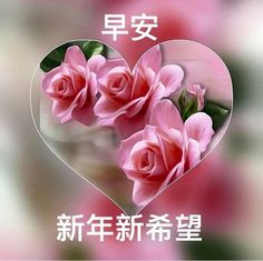 Morning Pictures, Good Morning Images, Good Morning Photos Download, Birthday Wishes Flowers, Chinese New Year Greeting, Good Morning Wallpaper, Good Morning Messages, Pictures Images, Rose