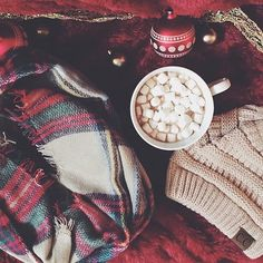 Bundle up this season in style❄️ Knit Beanie- $10  Plaid Infinity Scarf-$15 With FREE shipping!