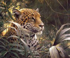 [EndLiss scans - Wildlife Art] Robert Bateman - Symbol of the Rainforest - Spotted Jaguar