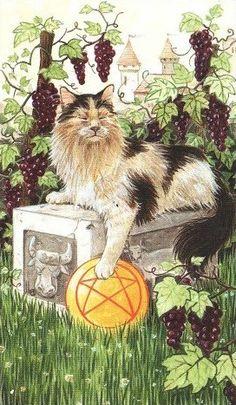 King of Pentacles by Lola Airaghi (Tarot of Pagan Cats)