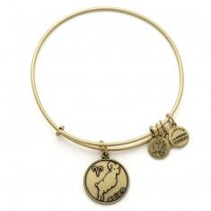 alex and ani | Aries Charm Bangle | in memory of my mother