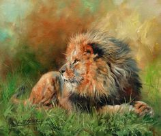 The Wildlife Art of David Stribbling. Original oil paintings of wildlife subjects by British artist, David Stribbling. African wildlife and big cats Wildlife Paintings, Wildlife Art, Animal Paintings, Elephant Paintings, Wild Life, Animal Art Projects, Lion Painting, Cute Animal Drawings, Horse Drawings