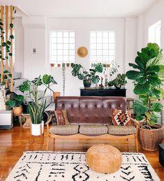 HOME & GARDEN: Une ancienne usine reconvertie par un amoureux des plantes