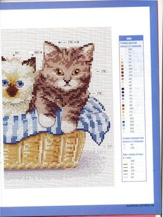 (45) Gallery.ru / Фото #1 - котята - irisha-ira