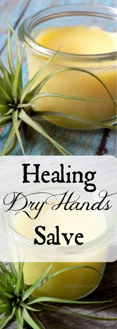 Healing dry skin salve is a 7 years-tested recipe for repairing hands, scrapes, cracked, over-washed skin, and soothing bug bites. Perfect homemade gift!