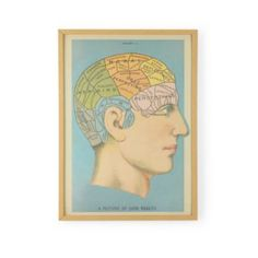 If I Only Had A Brain Framed Wall Art  | Crate and Barrel
