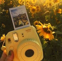 """The yellow aesthetic Yellow Polaroid Die gelbe Ã""""sthetik Gelbes Polaroid Yellow Aesthetic Pastel, Rainbow Aesthetic, Aesthetic Pastel Wallpaper, Aesthetic Colors, Aesthetic Collage, Aesthetic Backgrounds, Aesthetic Vintage, Aesthetic Pictures, Aesthetic Wallpapers"""