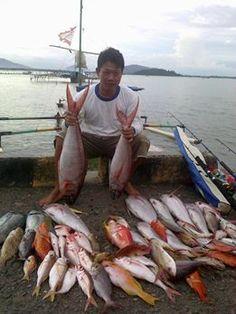 Fishing in Palopo,