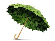 Ombrello di foglie
