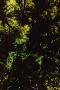 Night Sky Tie Dye, 2012  - Reach Out, I'm Right Here | Ryan McGinley